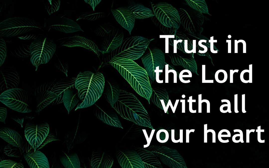 002 Trust in the Lord